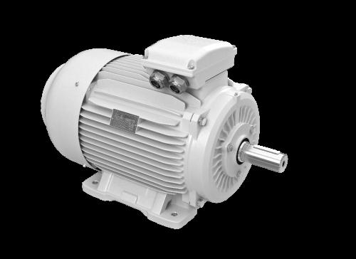 elektromotory 30kw 1LC250M-8
